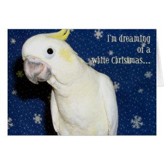 Cartes Noël blanc