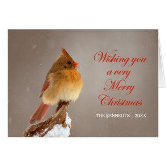 Cartes Noël - cardinal du nord sur la branche neigeuse
