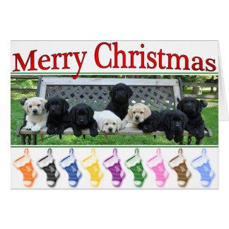 Cartes Noël de banc d'honneur