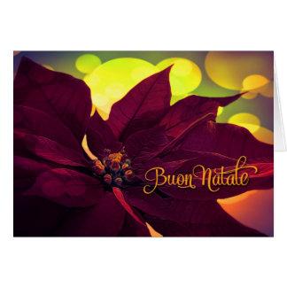 Cartes Noël de Buon Natale d'Italien - poinsettia de vin