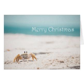 Cartes Noël de crabe de Sandy