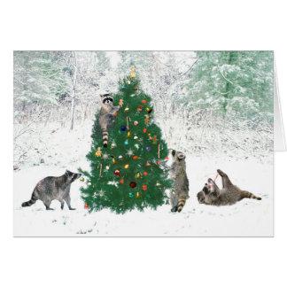 Cartes Noël de raton laveur