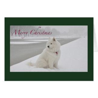 Cartes Noël de Samoyed (le Lincoln Memorial)