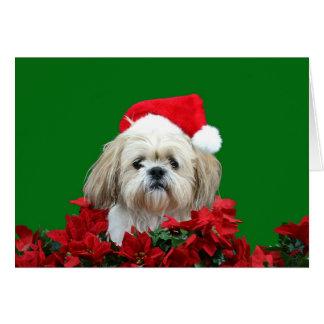 Cartes Noël de Shih Tzu