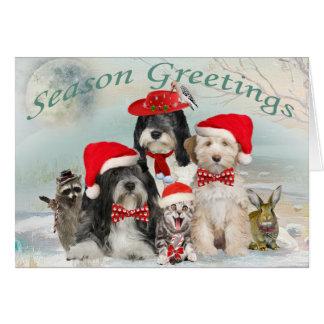 Cartes Noël de Terrier tibétain avec des amis