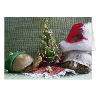 Cartes Noël de tortue