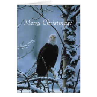Cartes Noël d'Eagle !