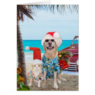 Cartes Noël drôle de Hawaïen/surfer d'animaux familiers