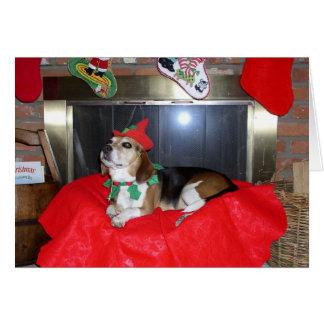 Cartes Noël Elf de beagle