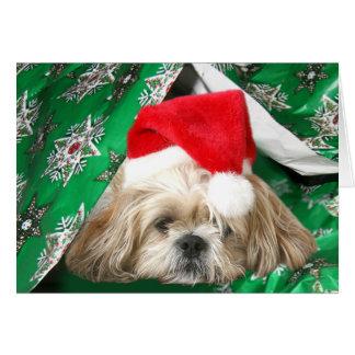 Cartes Noël fatigué Shih Tzu