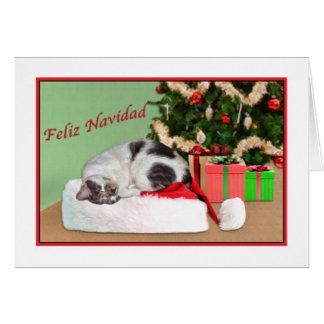 Cartes Noël, Feliz Navidad, Espagnol, chat de sommeil