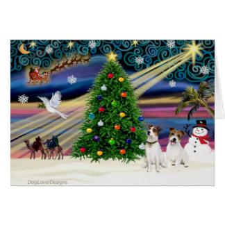 Cartes Noël Jack magique Russell Terrier (deux)