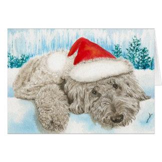 Cartes Noël Labradoodle