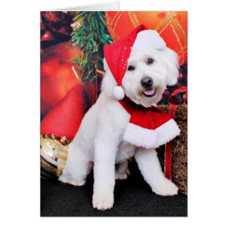 Cartes Noël - mini griffonnage - Winston