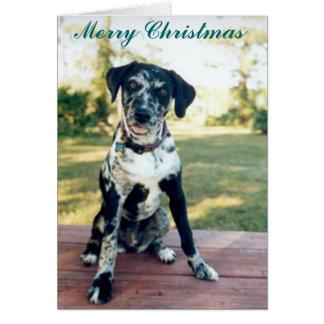 Cartes Noël Nellie