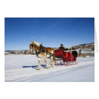 Cartes Noël occidental - Noël Sleigh de cheval