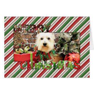 Cartes Noël - Westie - Sammy