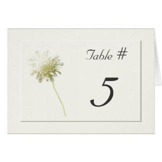 Cartes Nombres floraux de Tableau de mariage de pissenlit
