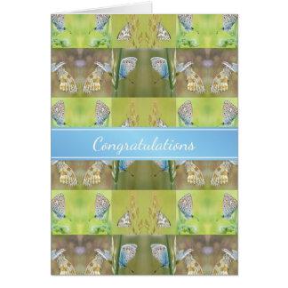 Cartes Nouveau collage à la maison de papillon de