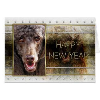 Cartes Nouvelle année - élégance d'or - caniche -