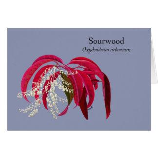 Cartes Novembre - Sourwood