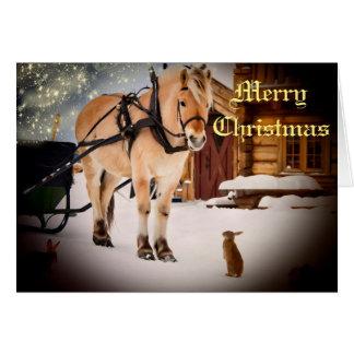 Cartes Nuit de Noël étoilée à la ferme avec le cheval