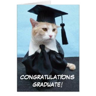 Cartes Obtention du diplôme