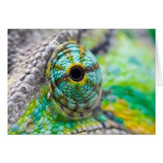 Cartes Oeil de caméléon