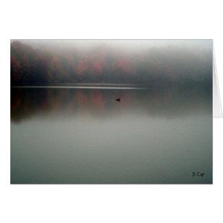 Cartes Oie dans le brouillard, S Cyr