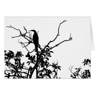 Cartes Oiseau d'Anhinga
