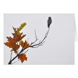 Cartes Oiseau d'automne