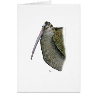 Cartes oiseau de bécasse des bois, fernandes élégants