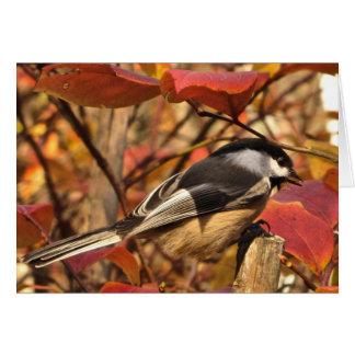 Cartes Oiseau de Chickadee avec l'anniversaire rose de