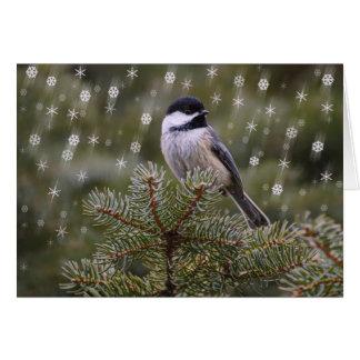 Cartes Oiseau de Chickadee en flocons de neige de pin