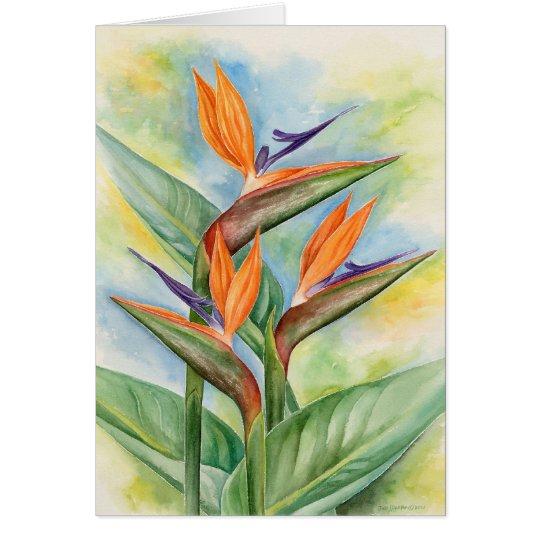 cartes oiseau de l 39 art de fleur de paradis multi. Black Bedroom Furniture Sets. Home Design Ideas