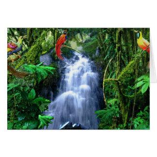 Cartes Oiseau du paradis dans la forêt tropicale