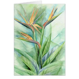 Cartes Oiseau tropical de fleur de la peinture de paradis