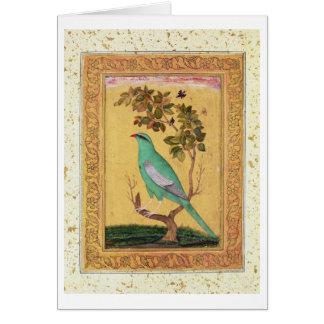 Cartes Oiseau vert, Mughal (gouache sur le papier)