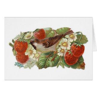 Cartes Oiseau vintage et fraises (blanc à l'intérieur),