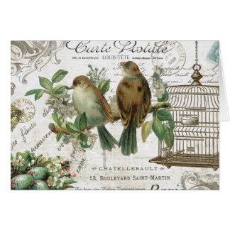 Cartes Oiseaux et cage à oiseaux français vintages