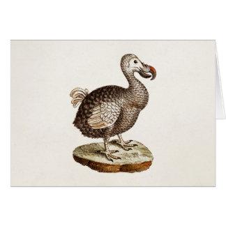 Cartes Oiseaux vintages de dronte de 1700s d'illustration