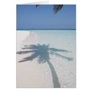 Cartes Ombre d'un palmier sur une plage abandonnée d'île