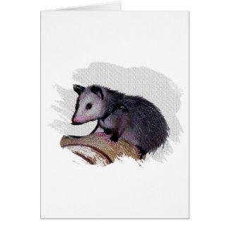 Cartes Opossum impressionnant d'opossum