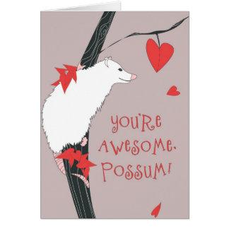Cartes Opossum impressionnant Valentine