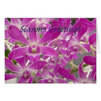 Cartes Orchidées de Joyeuses Fêtes