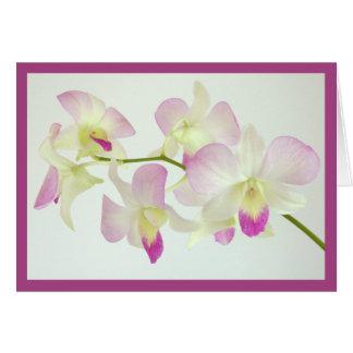 Cartes Orchidées sur l'anniversaire blanc et joyeux !