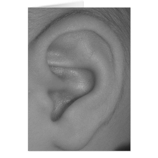 Cartes oreille de b b blanc l 39 int rieur for Interieur oreille