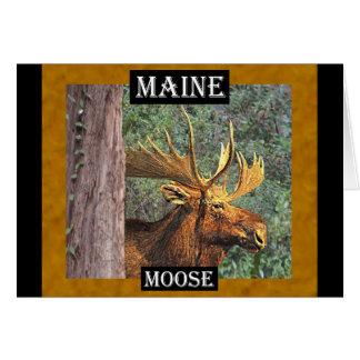 Cartes Orignaux du Maine