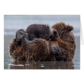 Cartes Ours de Brown et petits animaux 2