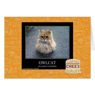 Cartes Owlcat